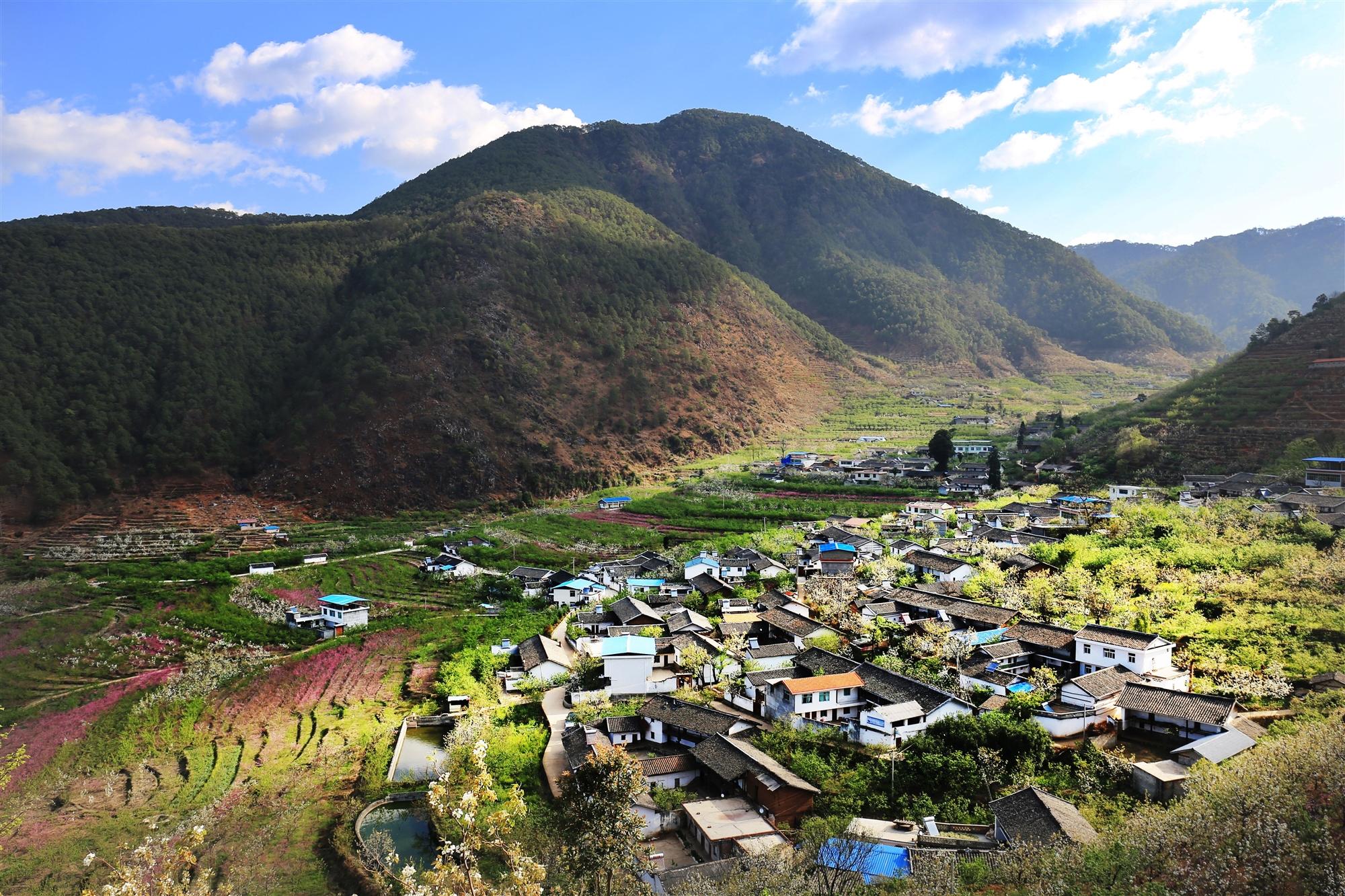 攀枝花这两个小镇上榜四川省第三批省级森林小镇名单
